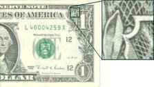 Dollar Owl